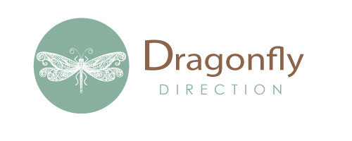 Dragonfly Direction